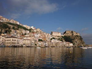 Scilla from our buoy