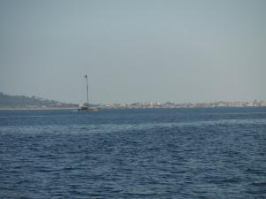 Sword fishing boat